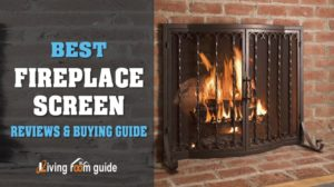Best Fireplace Screen of 2017 | Reviews